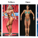 Divisions Explained – Women's Bikini, Wellness, Figure, Physique & Bodybuilding